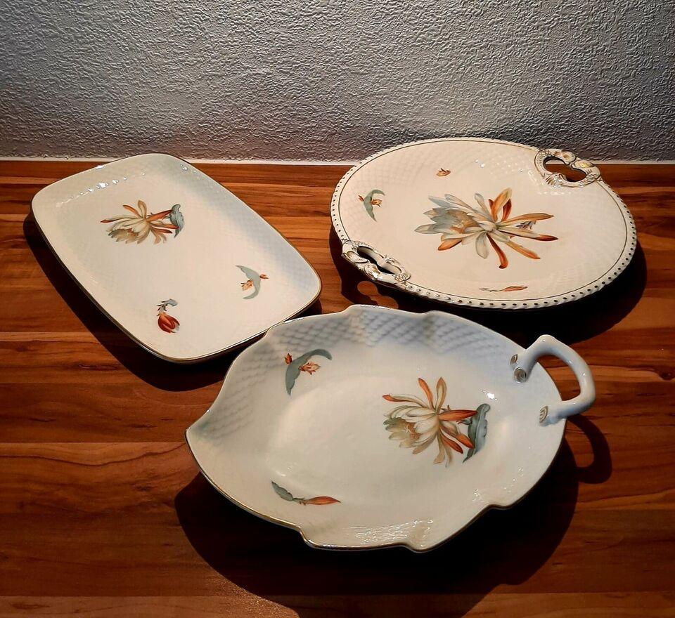 Porcelæn, Kaktus, B&G