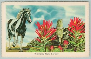 Wyoming-State-Flower-The-Indian-Paint-Brush-Interests-Horse-1973-Artist-Ken-Haag