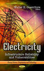 Electricity: Infrastructure Reliability & Vulnerabilities by Nova Science Publishers Inc (Hardback, 2013)