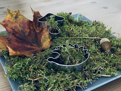 Igel Fliegenpilz Edelstahl Ausstecher Ausstechform Herbst Set 3er Apfel