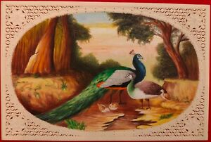 Hand-Painted-Peacock-Bird-Animal-Miniature-Painting-India-Art-WildLife