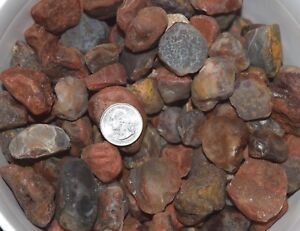 "Lake Superior Agate 1 to 5 Pound Lot, Large, 1"" - 1-3/4"""
