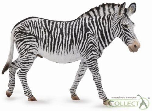 Equus /'s ZEBRA cm 13 Animali Selvatici Collecta 88733