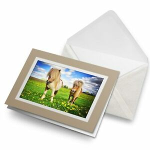 Greetings-Card-Biege-Shetland-Ponies-Horse-Animals-Cute-8518