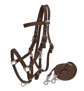 BROWN-Horse-Size-Nylon-Combination-Halter-Bridle-With-7-039-Reins-NEW-HORSE-TACK