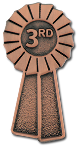 3rd Place Bronze Rosette Award Pin Badge For Schools