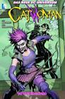 Catwoman von Scott Alan McDaniel, Rafa Sandoval und Ann Nocenti (2014, Taschenbuch)