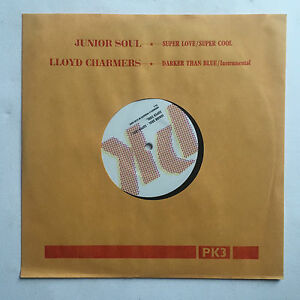 JUNIOR-SOUL-LLOYD-CHAMBERS-SUPER-LOVE-10-INCH-VINYL-FREE-P-amp-P-UK-REGGAE