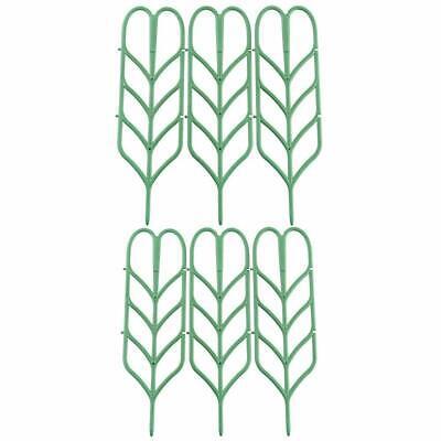 Supporto Delle Piante Pianta Rampicante Spalliera Crescente Sostegno Telaio Giardino Pianta (10*35.5)- Piacevole Nel Dopo-Gusto