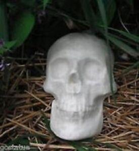 "Skull plastic mold plaster cement concrete mould 8.5/"" x 6/"" x 2/"""