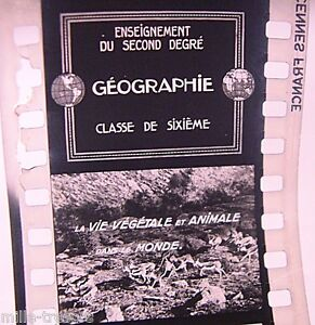 FILM-Images-Fixes-DOCUMENTAIRE-Ecole-GEOGRAPHIE-Zone-SUBDESERTIQUE