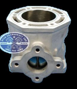 Nouvellement-Re-Plated-Arctic-Cat-440-Cylindre-98-00-Zl-436cc-Scem-4-BOLT-Entree
