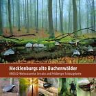 Mecklenburgs alte Buchenwälder von Klaus Borrmann (2012, Kunststoffeinband)