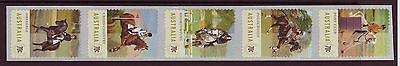 KüHn Australien 2014 Equestrian Events Selbstklebend Spule Briefmarken Gestempelt Hohe Sicherheit Australien, Ozean. & Antarktis