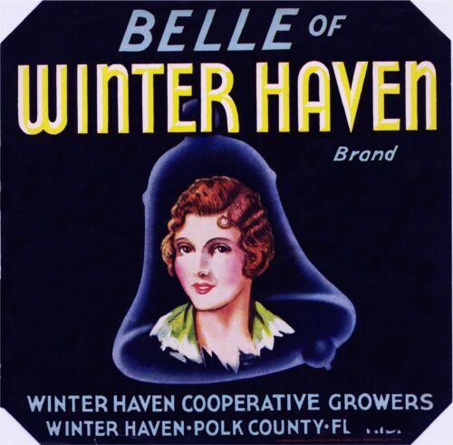 Winter Haven Florida Belle Winter Haven #2 Orange Citrus Fruit Crate Label Print
