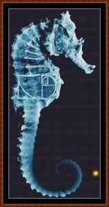 FRINGE-1-SEAHORSE-cross-stitch-pattern-PDF-point-de-croix-TV