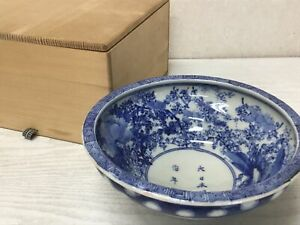 Y2103-CHAWAN-Seto-ware-underglaze-confectionery-signed-box-Japan-pottery