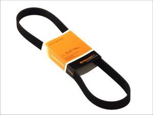 6pk905-CONTITECH-V-Ribbed-Fan-Alternator-Belt-CITROEN