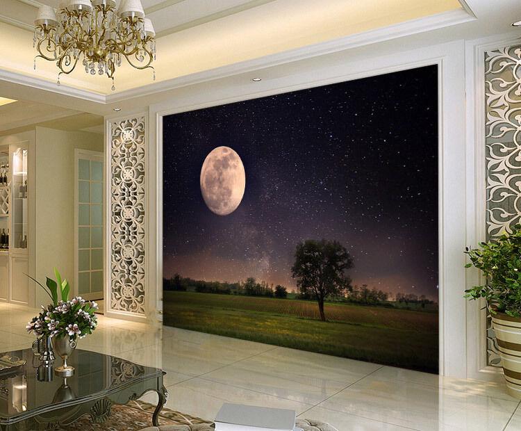 Beautiful Full Moon Night Full Wall Mural Photo Wallpaper Print Home 3D Decal
