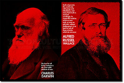 CHARLES DARWIN & ALFRED RUSSEL WALLACE ART QUOTE PRINT PHOTO POSTER GIFT SCIENCE