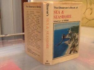 Observers Book Of Sea amp Seashore 1975 - Keighley, United Kingdom - Observers Book Of Sea amp Seashore 1975 - Keighley, United Kingdom