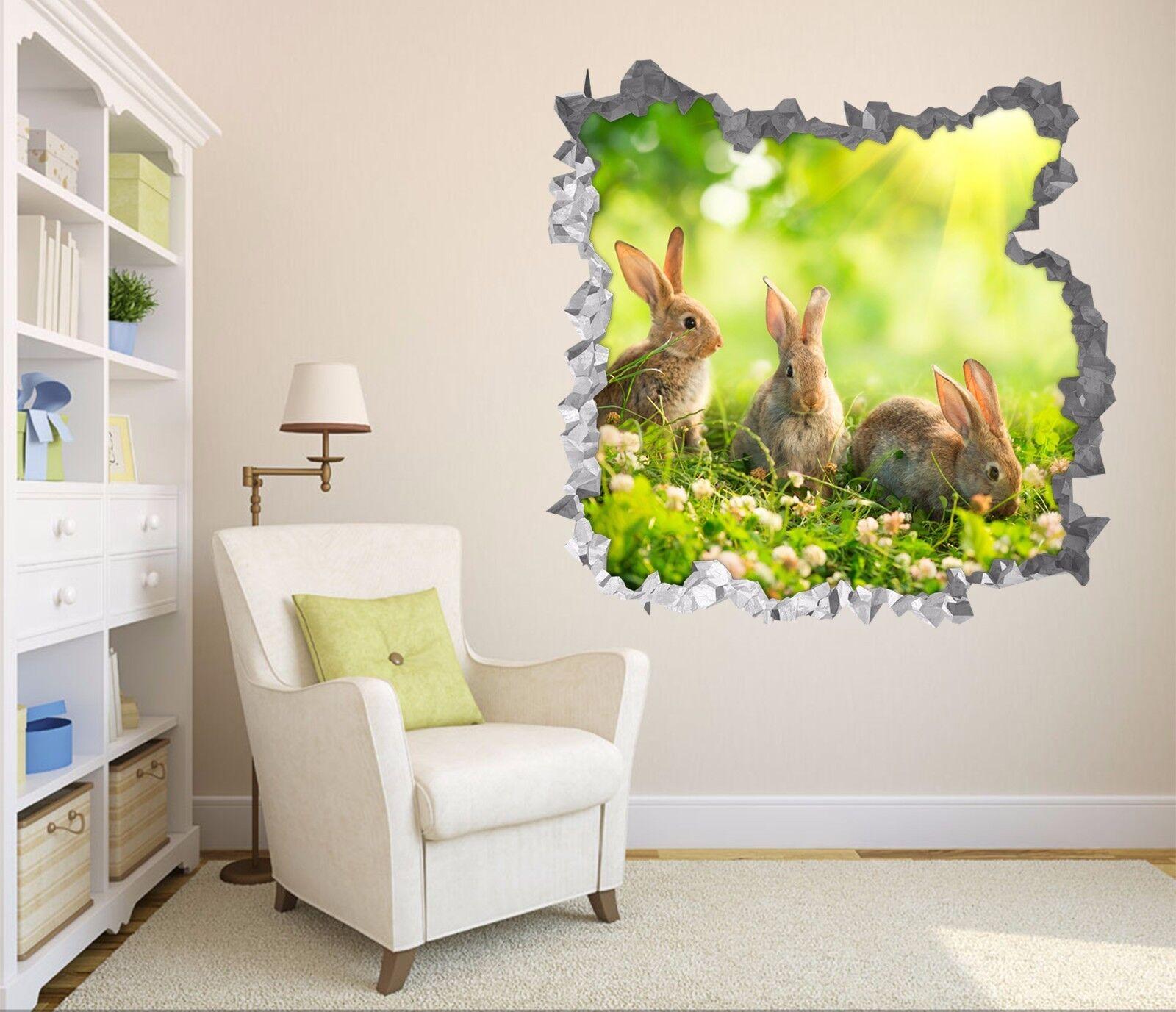 3D Kaninchen Gras 7 Mauer Murals Mauer Aufklebe Decal Durchbruch AJ WALLPAPER DE