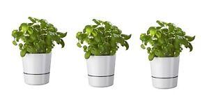 Mepal-Hydro-Herbs-Kraeutertopf-gross-3-teiliges-Set-weiss-mit-Baumwollfaden-NEU