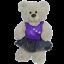 8-10-inch-25cm-TEDDY-CLOTHES-PINK-DRESS-PRINCESS-WITCH-TUTU-BIRTHDAY-WINTER thumbnail 11