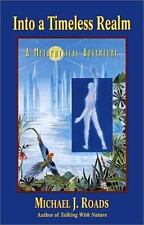 INTO A TIMELESS REALM : A METAPHYSICAL ADVENTURE Roads, Michael Paperback