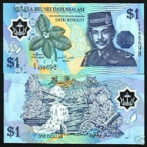 BRUNEI 1 RINGGIT NEW 2011 WATERFALL RAIN FOREST POLYMER UNC CURRENCY MONEY NOTE