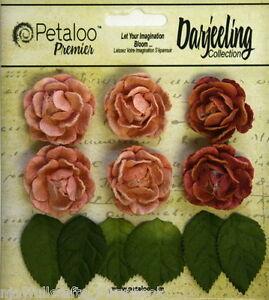 SPICE-6-Mini-GARDEN-ROSETTE-Paper-Flowers-25-30mm-amp-6-Leaves-Darjeeling-Petaloo