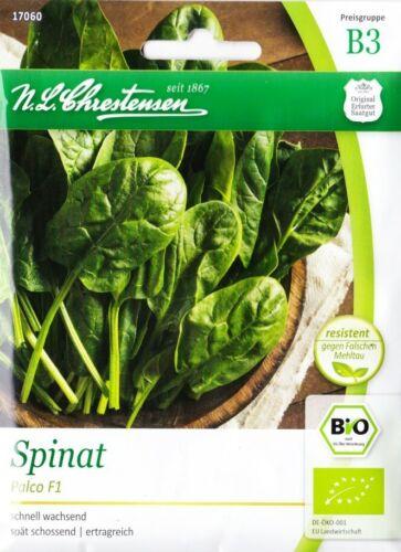 semillas Bio espinaca /'palco/' f1-Spinacia oleracea invierno duro 17005