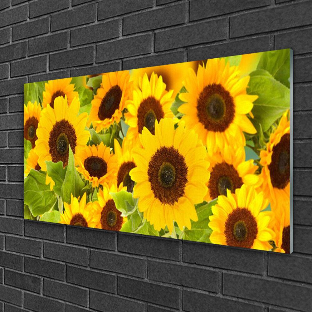 Tableau sur verre Image Impression 100x50 Floral Tournesols