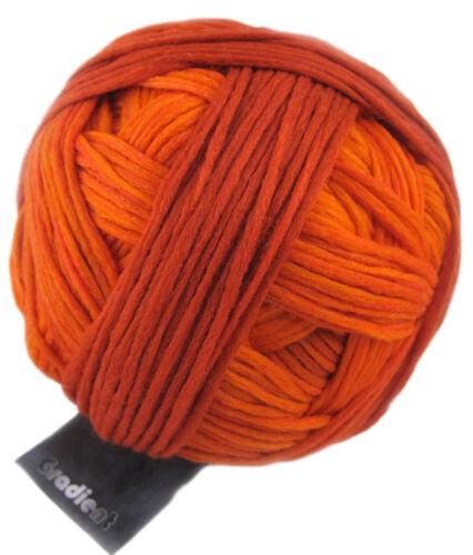 Wolle von Schoppel Gradient 100g  weich und kuschelig Farbe 1873 Indian summer