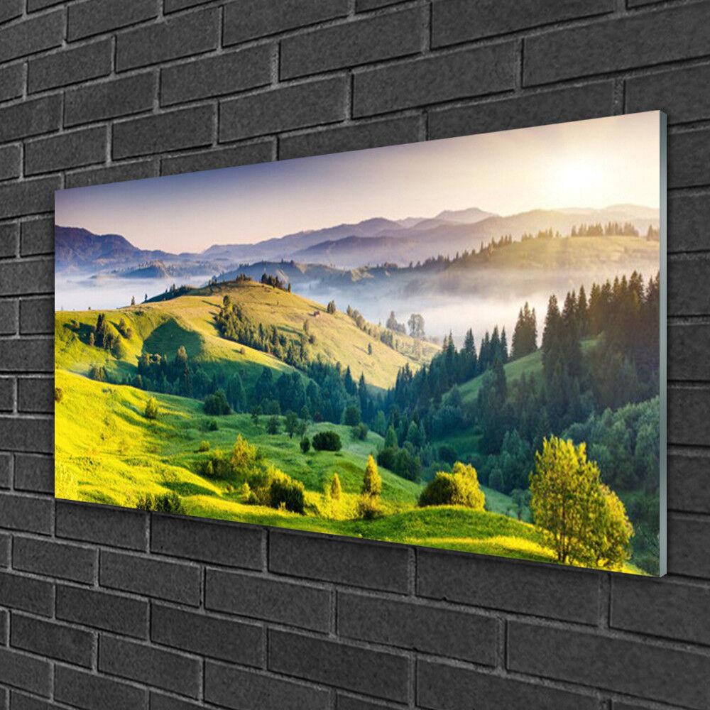 Image sur verre Tableau Impression 100x50 Montagnes Champ Forêt Brouillard