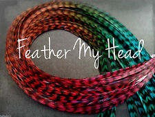 Multi Colored Whiting Feather Hair Extension.  Ombre Blend, Durango All Grizzly