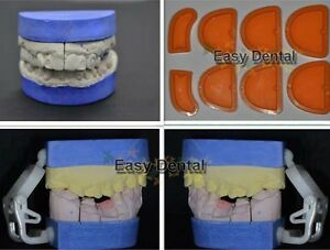 8pcs-Dental-Silicone-Plaster-Model-Former-Tray-Base-Molds-Mould-NEW