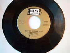 DAVID JONES (OF THE MONKEES)-COLPIX 784 ROCK 45 WHAT ARE WE GOING TO DO? VG++