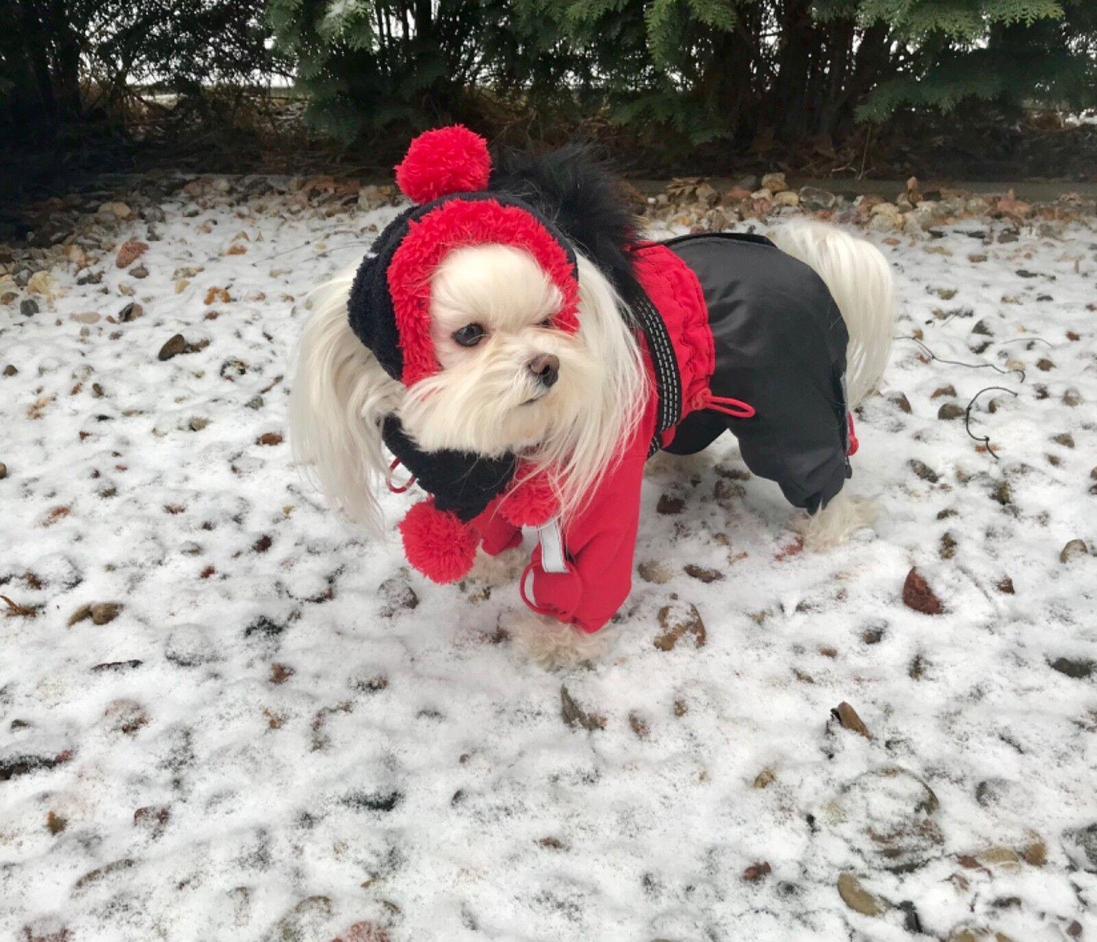 Vancouver  cappotto invernale cappotto neve, Mantella, Cappotto per femmine