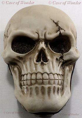 NEMESIS NOW WAITING BEYOND SKULL TRINKET BOX Gothic/Occult/Fantasy/Horror/Legend