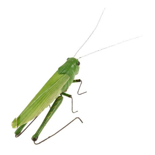 lebensechte Künstliches Insektenmodell Skulptur  5pcs  für Kühlschrankmagnet