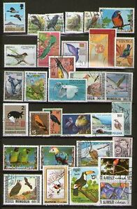 LOT-DE-TIMBRES-OBLITERES-OISEAUX-TOUS-DIFFERENTS-TTB