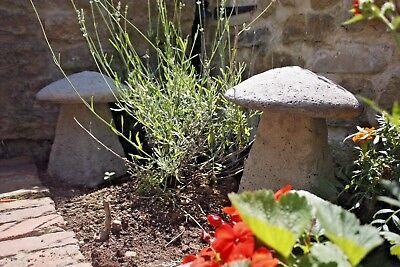 Medium staddle STONE DA GIARDINO ovolacci Fungo Ornamento Pietra da giardino ornamenti