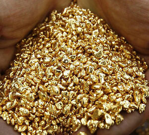24K-9999-medical-grade-Pure-Gold-Shot-5-Grains-of-Round-Bullion-Not-Scrap