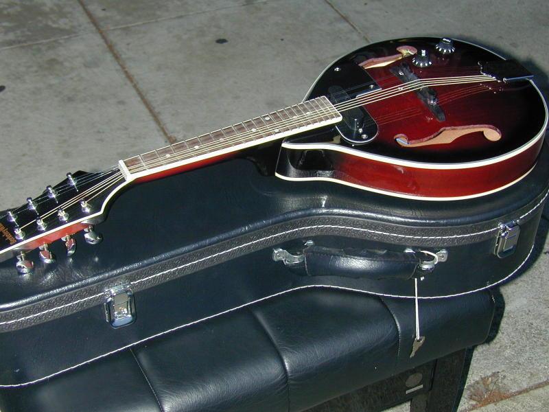 Berkeley Electric Acoustic Mandolin 2xGDAE W Hard CaseSurprise KOSTENLOS Geschenk w Pack