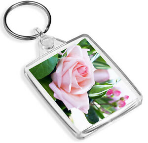 IP02 Pink /& White Roses Keyring Flowers Floral Beautiful Cool Gift #12669
