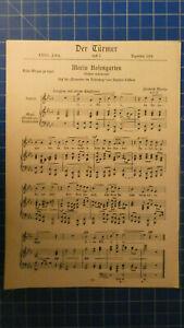 Der-Tuermer-Maria-Rosengarten-und-Abendrot-1924-H-8545