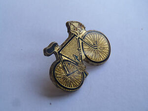 pin-039-s-racing-bicycle