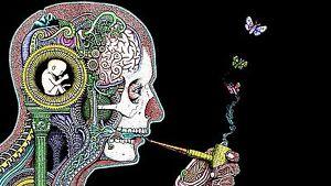 5x3-034-Marijuana-Mushroom-Salvia-Vision-STICKER-Great-for-glass-bong-or-pipe