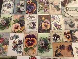 LOT-of-25-Pansies-PANSY-Flowers-Victorian-Greetings-Postcards-In-Sleeves-s651